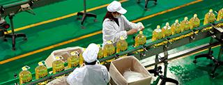 Procesador Industrial de Alimentos