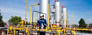Protección Ambiental Integrada a la Producción Industrial